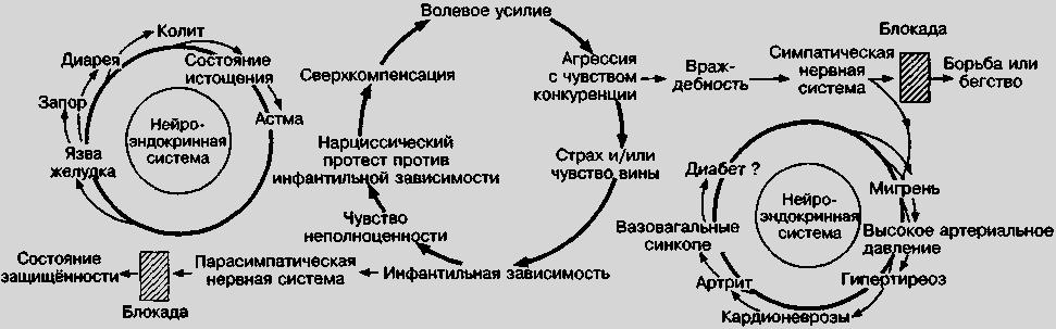 История и теории психосоматики Александер