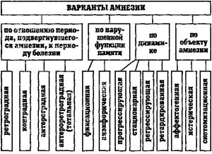 Классификации амнезий